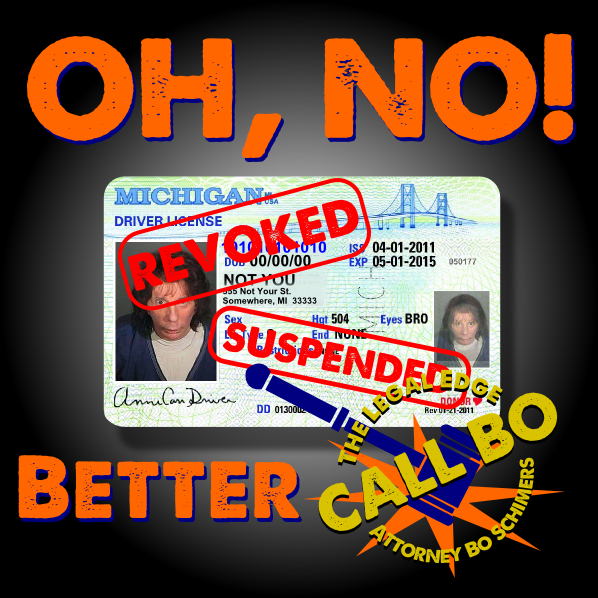 Michigan Drivers License Restoration - Call Bo